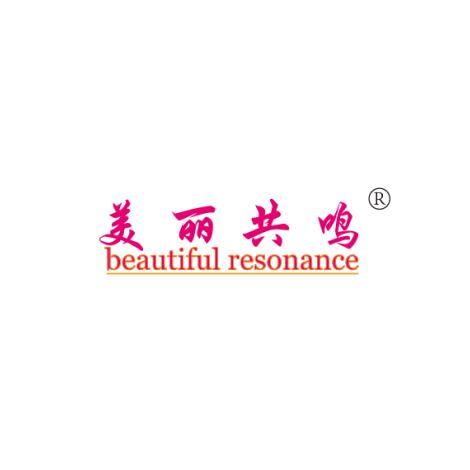 美丽共鸣BEAUTIFUL RESONANCE